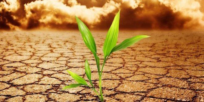 «Ανησυχητική» η κατάσταση του παγκόσμιου κλίματος το 2016