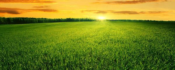 Πρόκληση της δεκαετίας το νέο μοντέλο της γεωργίας