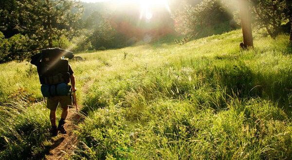 Λακωνία: Απαγόρευση της κυκλοφορίας για την προστασία των δασών