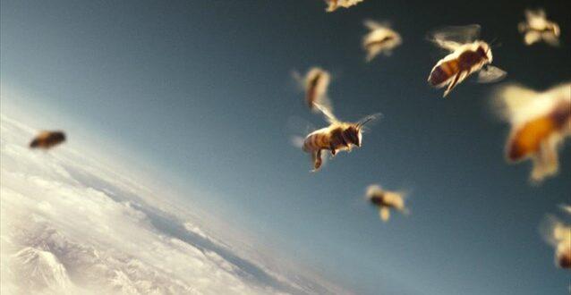 Μέλισσες για την ανίχνευση ναρκωτικών ουσιών