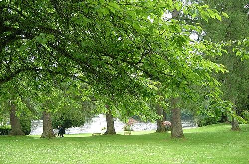 Το πράσινο επηρεάζει την έκβαση ενός τοκετού