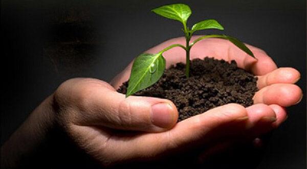 «Να αντιμετωπίσουμε τη γεωργία μας ως επένδυση»