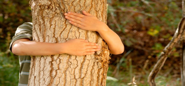 «Περιοχή Προστασίας της Φύσης» μεγάλο μέρος από Κατάκολο έως Κυπαρισσία