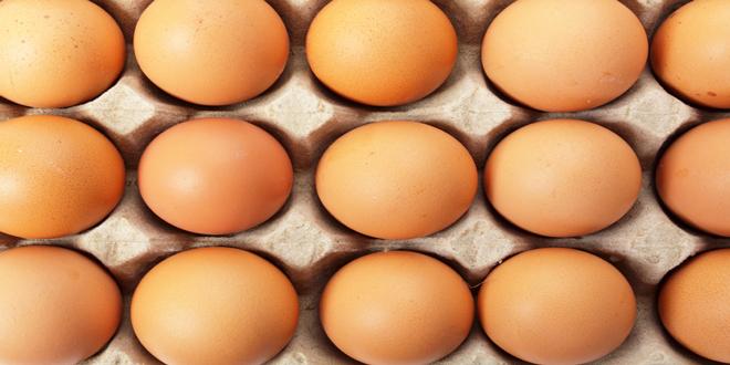 Μολυσμένα με εντομοκτόνο εκατομμύρια αυγά