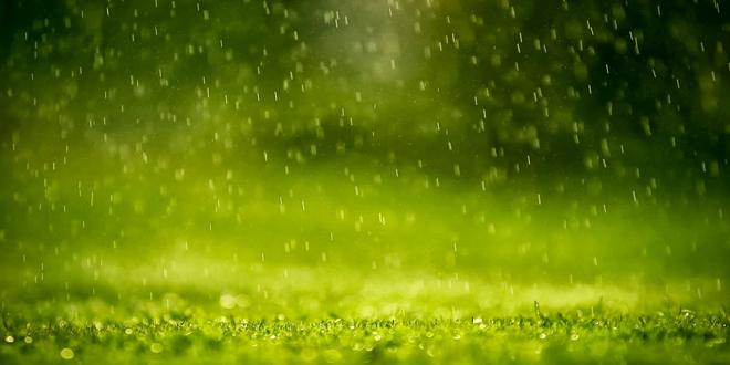 Η πιο βροχερή τοποθεσία στον πλανήτη