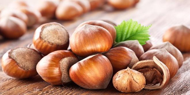 Η Nutella απογειώνει την καλλιέργεια φουντουκιού