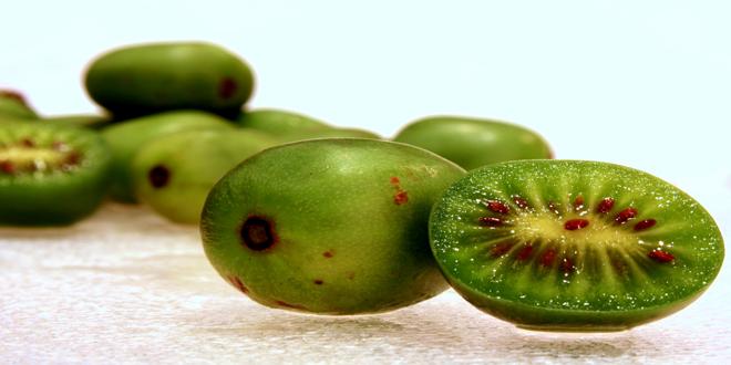 Μίνι ακτινίδια – Κερωμένα μήλα