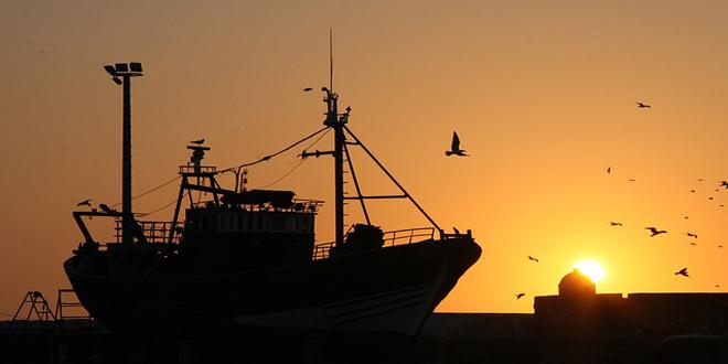 Σε τετραπλάσια έκταση η παγκόσμια αλιεία σε σχέση με την παγκόσμια γεωργία
