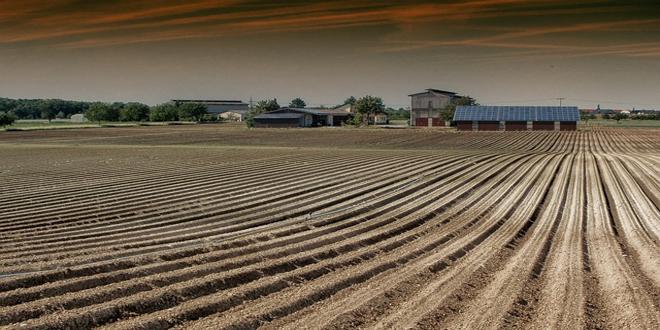 Αγροτικές Συμπράξεις Καινοτομίας-Η υπεραξία και οι κρίκοι της αλυσίδας