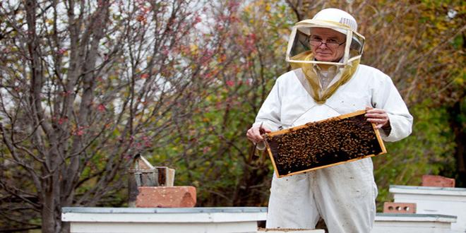 Μελισσοκομία για προχωρημένους – Μελισσοκομία ΙΙ