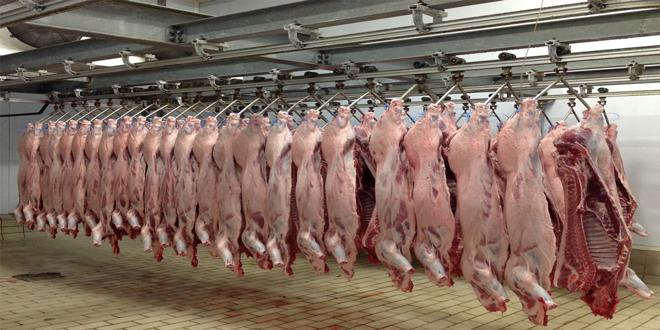 Δεν χωρούν δύο σφαγεία σε 5 χλμ.-Περιορισμός λειτουργίας των σφαγείων ελλείψει κτηνιάτρων