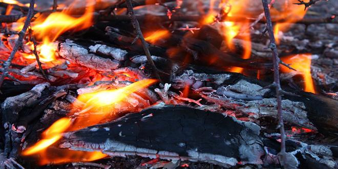 Αιτήσεις για χορήγηση ενίσχυσης λόγω ζημιών από τις πυρκαγιές 2013