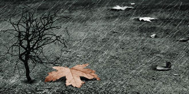 Αλλαγή του καιρού με ισχυρές βροχές και καταιγίδες