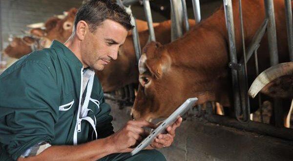 Κτηνίατρος Εκτροφής: Πολύτιμο «εργαλείο» για την ανάπτυξη της ελληνικής κτηνοτροφίας