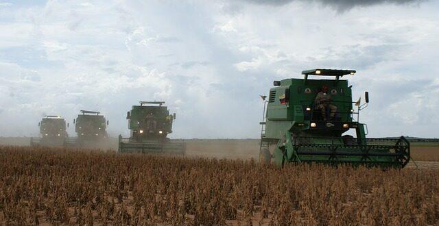 Ε.Ε.: Κατακόρυφη αύξηση στις εισαγωγές σπόρων σόγιας από ΗΠΑ