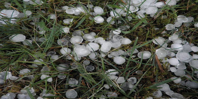Γαλλία: Καταστροφές από χαλάζι σε 170.000 στρέμματα αμπελιών