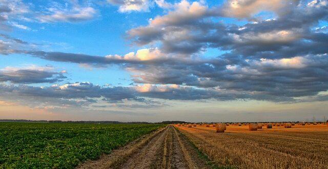 Διαχωρίζεται η ελληνική γεωργία από τη ευρωπαϊκή