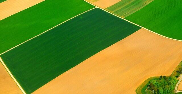 ΕΑΕ 2016: Ποια θεωρείται επιλέξιμη έκταση και ποιες καλλιέργειες δηλώνονται