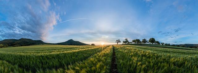 Υποβλήθηκε στην Ε.Ε. το Πρόγραμμα Αγροτικής Ανάπτυξης