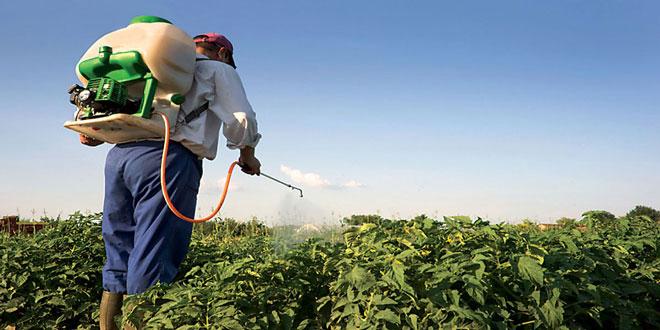 Παράνομα φυτοφάρμακα και ακατάλληλα γεωργικά προϊόντα εντόπισαν οι Αρχές