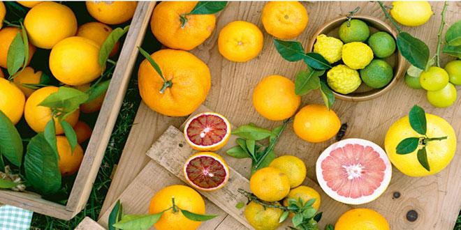 Πορτοκάλια: Αύξηση της ζήτησης, ελλείψεις στην αγορά