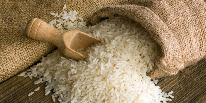 Αίγυπτος: Στοπ στις εισαγωγές ρυζιού
