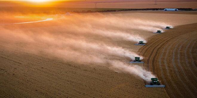 FAO: Αύξηση κατά 11% στις τιμές των τροφίμων