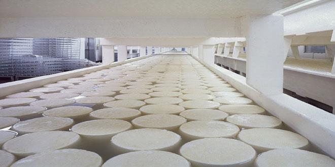 Αύξηση της ζήτησης γαλακτοκομικών προϊόντων προβλέπει η Ε.Ε.