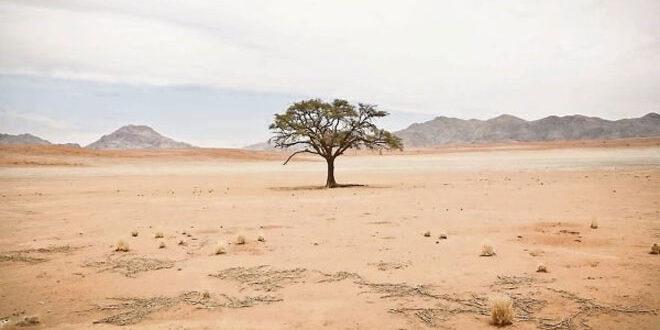 Η χειρότερη ξηρασία των τελευταίων 900 ετών στην Ανατολική Μεσόγειο