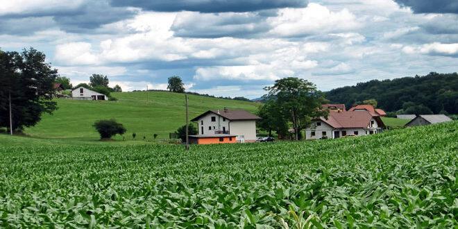 Νέα ΚΑΠ: Υψηλότερο επίπεδο στήριξης για τις μικρομεσαίες γεωργικές εκμεταλλεύσεις
