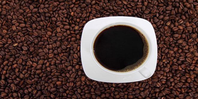 Η περίφημη ποικιλία καφέ Arabica