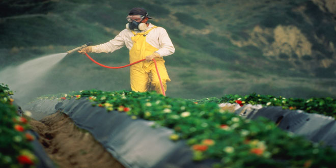 Πρόγραμμα ελέγχων φυτοπροστατευτικών προϊόντων σε επαγγελματίες χρήστες γεωργικών φαρμάκων
