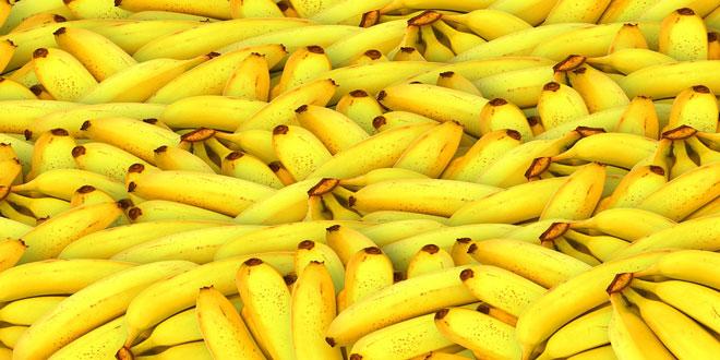 Παραγωγή ενέργειας από μπανάνες