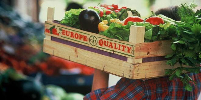 Μήλα και τομάτες τα κυριότερα φρούτα και λαχανικά της Ε.Ε. – Οι κυριότερες παραγωγοί χώρες