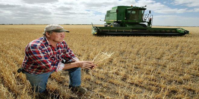 Περικοπές έως 60% στους συνταξιούχους ΟΓΑ που συνεχίζουν να είναι αγρότες