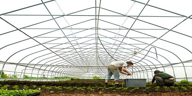 Ξεκινάει η περίοδος των εγγραφών στις επαγγελματικές σχολές γεωργικής εκπαίδευσης