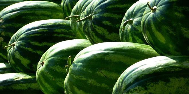 Άνοδος σχεδόν 10% στις εξαγωγές ελληνικών θερινών φρούτων