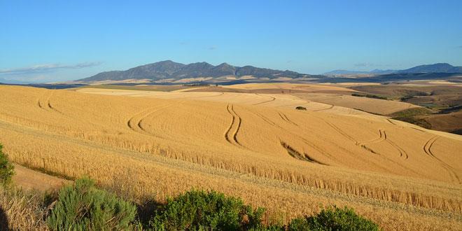 Τα εμπόδια στο δρόμο της ανάπτυξης του γεωργικού τομέα