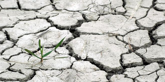 10° Φεστιβάλ επιστημονικού κινηματογράφου-Αφιέρωμα Περιβάλλον και Κλιματική Αλλαγή