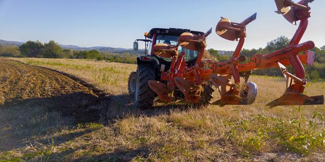 Πρόγραμμα Νέων Γεωργών 2016: Πόσα στρέμματα ή αριθμό ζώων πρέπει να διαθέτει ο υποψήφιος νέος γεωργός