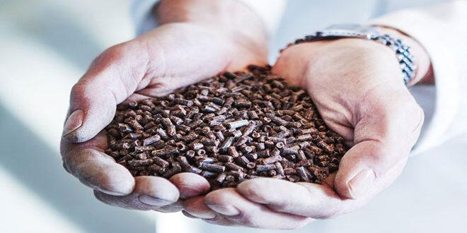 Νέα μέθοδος παραγωγής ζωοτροφών από φυσικό αέριο