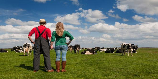 Οικογενειακή αγροτική εκμετάλλευση: Ποια είναι η ελάχιστη ασφαλιστική εισφορά των μελών