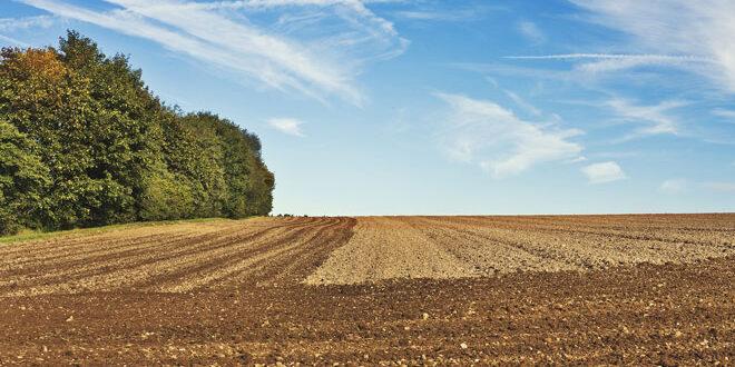 Η υψηλή ποιότητα των ελληνικών αγροτικών προϊόντων