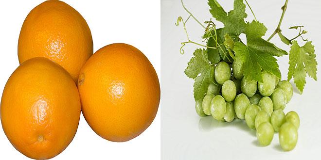 Οι εξαγωγές ελληνικών φρούτων στην Ιταλία. Πορτοκάλια – Σταφύλια