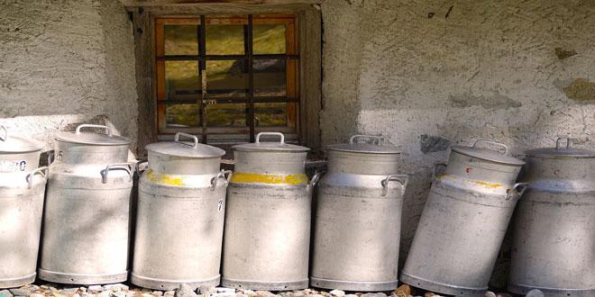 Δήλωση Ισοζυγίου Γάλακτος: Επιβολή προστίμων από τον ΕΛΓΟ