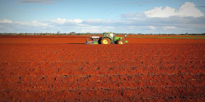 Αυξημένες οι τιμές εισροών και εκροών σε γεωργία κτηνοτροφία