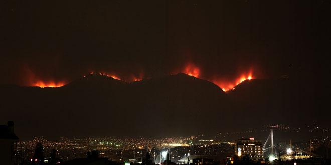 Πάρνηθα : 10 χρόνια μετά την καταστροφική πυρκαγιά