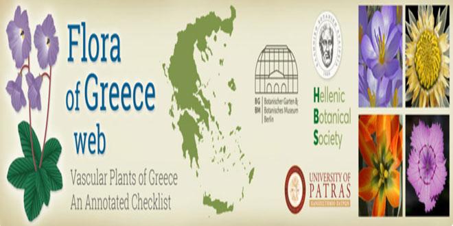 Ιστοσελίδα για την ελληνική χλωρίδα