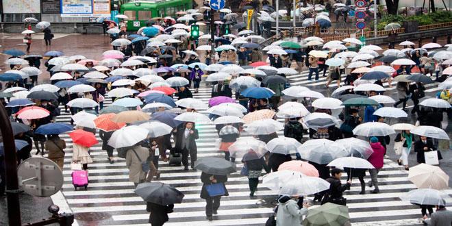 Ιαπωνία: Οι 18 συνεχόμενες ημέρες βροχής αύξησαν τις τιμές στα λαχανικά