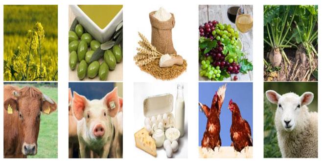 Τι προβλέπει η έκθεση της Ε.Ε. για σιτηρά, ζάχαρη, ελαιόλαδο, γαλακτοκομικά προϊόντα κ.α.